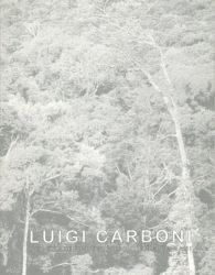 Carboni_2001_miniatura