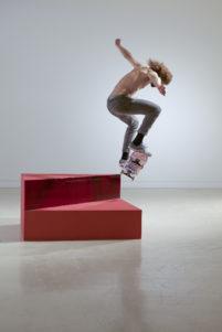 Skateboarders-vs-Minimalism-2015