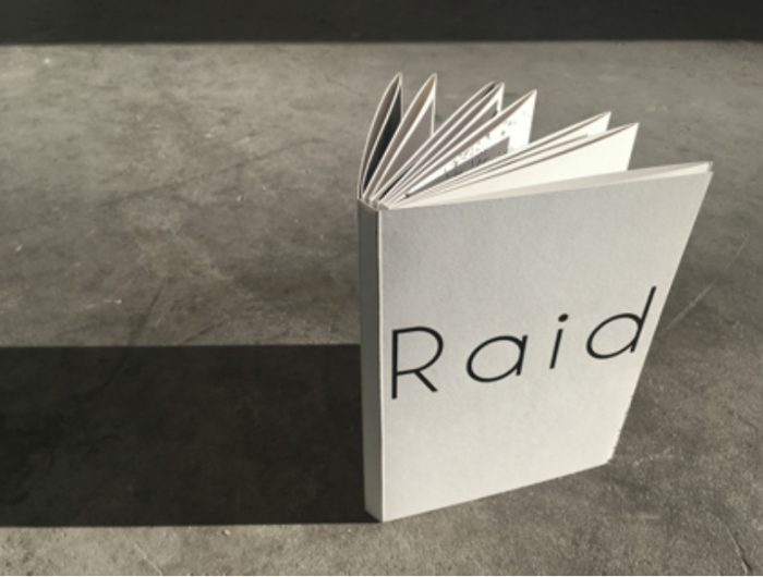 Raid the book