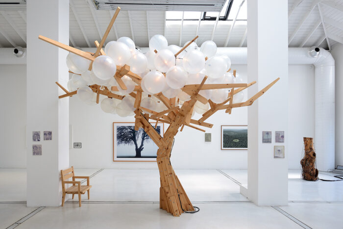 Installation view – Today I would like to be a Tree